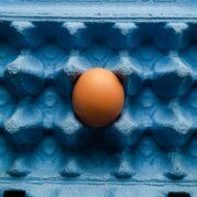 """Můj empirický výzkum na téma """"Vajíčka"""" (TG)"""